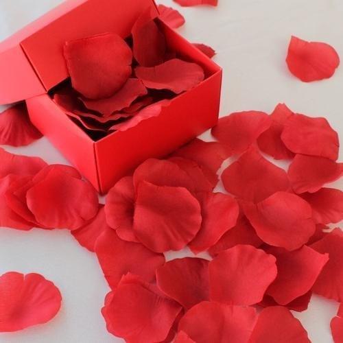 Kırmızı Kutuda Gül Yaprakları